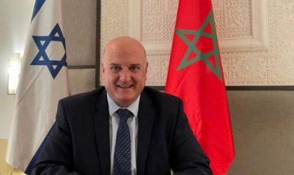 L'ambassadeur israélien David Guvrin à Rabat : normalisation officielle Maroc-Israël