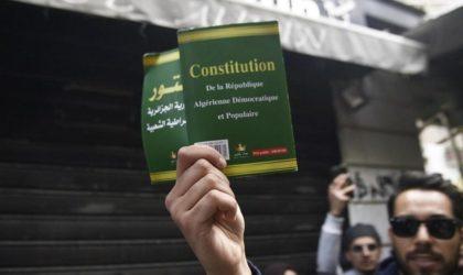 L'islamologue Razika Adnani : «La Constitution est sous emprise islamiste»