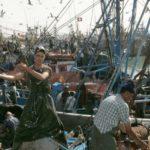 pêche Deutsche Welle