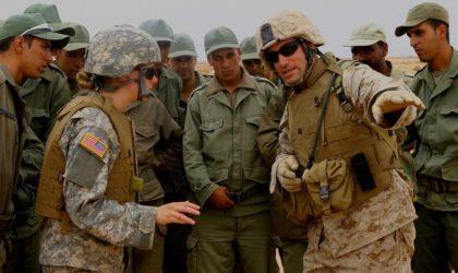 Manœuvre militaire maroco-américaine près de Tindouf : le grand bluff de Rabat