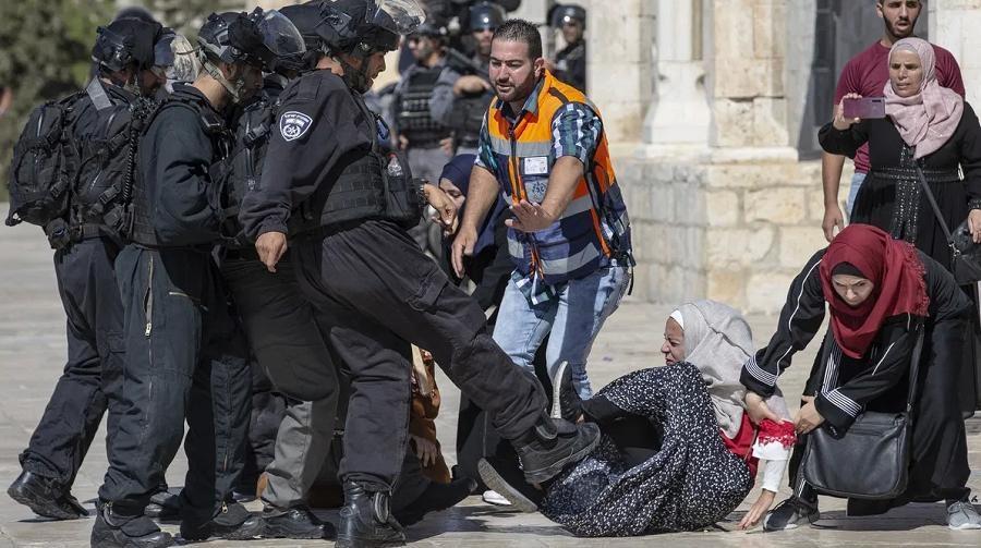 Palestine traitement