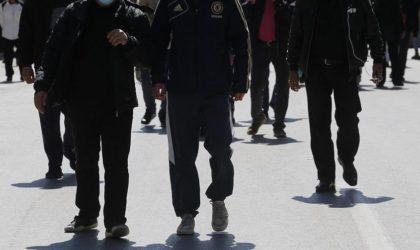Comment reconnaître les mercenaires du mouvement Rachad dans le Hirak