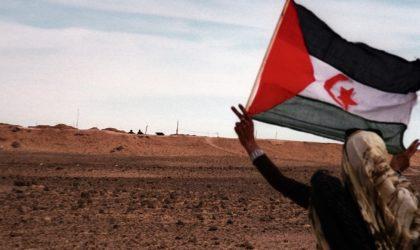 L'Allemagne est catégorique : le Sahara Occidental a droit à son indépendance