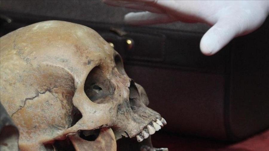 crânes résistants algériens