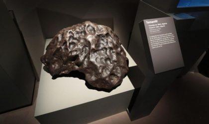 431 météorites appartenant à l'Algérie sont conservées au Muséum de Paris