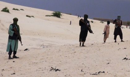 Interview – L'expert en défense David Cumin : «L'ennemi, c'est le djihadisme adossé au salafisme»