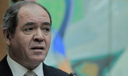 Boukadoum prend part à la réunion ministérielle de l'OCI sur la Palestine