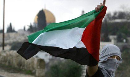 La Palestine est au bout du fusil