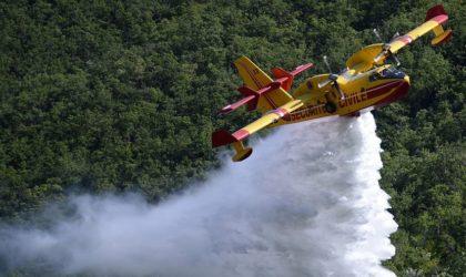 Feux de forêts : l'Algérie affrète deux avions bombardiers d'eau auprès de l'UE
