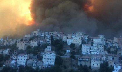 Cent trois incendies simultanés à travers dix-sept wilayas : Tizi Ouzou la plus touchée