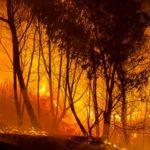 TO incendies de forêts