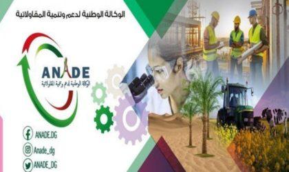 ANADE : les micro-entreprises peuvent élargir leurs activités à d'autres domaines